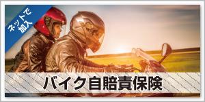 top_gallery_bike