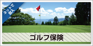 top_gallery_golf